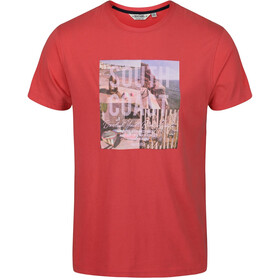 Regatta Cline IV Camiseta Hombre, true red